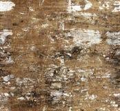 与老灰泥纹理的无缝的背景 免版税库存照片