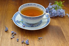 与老瓷茶杯的勿忘草 免版税库存图片