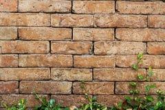 与老砖墙的抽象背景 免版税图库摄影