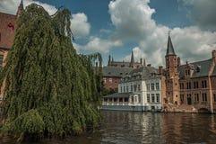 与老砖瓦房的叶茂盛树在运河` s边缘在一个晴天在布鲁日 库存图片
