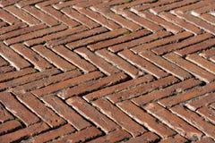 与老砖的地板-锡耶纳意大利 库存图片