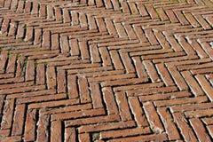 与老砖的地板-锡耶纳意大利 免版税图库摄影