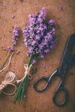 与老金属剪刀和麻线伞的淡紫色 免版税库存图片