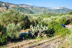 与老铁路的农村风景在西西里岛 免版税图库摄影