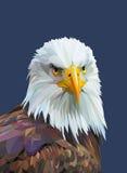 与老鹰的低多海报 也corel凹道例证向量 免版税库存图片