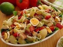与肉残羹剩饭和新芽的沙拉 库存照片
