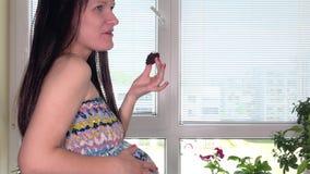 与胃口和嫩棕榈大腹部的妊妇妻子叮咬甜蛋糕 股票录像