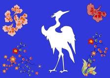 与胆怯的美妙的大鸟 库存照片