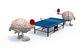 与胳膊和腿的脑子那播放对乒乓球 库存照片