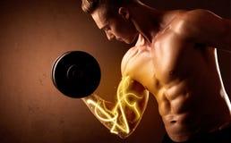 与能量的强健的身体建造者举的重量在二头肌点燃 免版税库存照片