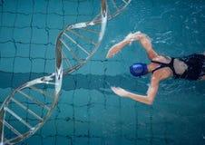与脱氧核糖核酸链子的妇女游泳 库存例证