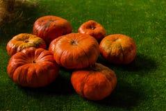 与腹片线的橙色南瓜纹理在一绿色backgrou的 库存图片