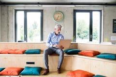 与膝上型计算机的成熟商人在创造性的办公室 库存图片