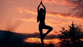 与自己和世界一致 站立在瑜伽姿势的妇女剪影在惊人的日落期间 股票视频