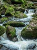 与自来水的小河 免版税图库摄影