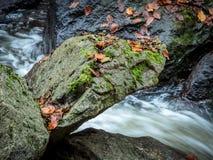 与自来水的小河 库存图片