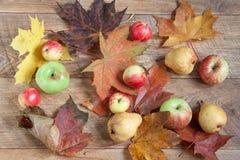 与自然各种各样的礼物的秋天静物画  在收获以后 库存图片