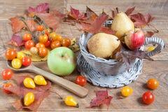 与自然各种各样的礼物的秋天静物画  在收获以后 图库摄影