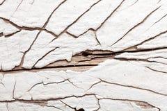 与自然样式的白色木纹理 库存照片