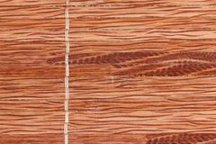 与自然样式的竹木纹理 库存照片