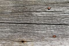 与自然样式的老木纹理 在树背景里面 老脏和被风化的灰色木墙壁板条 免版税库存照片