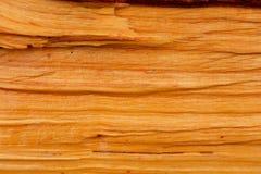与自然橙色木颜色的桤木 库存照片