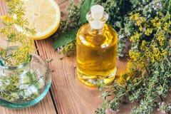 与自然油的芳香疗法和草本、柠檬和麝香草 免版税库存照片