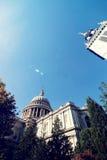 与自然的伦敦大厦 免版税图库摄影