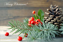 与自然装饰的圣诞卡 免版税库存照片