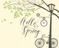 与自行车、树和路灯柱的春天风景 库存照片