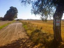 与自行车标志的自行车足迹在树 免版税库存照片