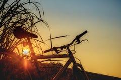 与自行车的美好的风景图象在日落 免版税图库摄影