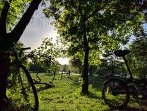与自行车的野餐在公园 免版税库存图片