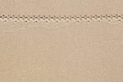 与自行车轨道的沙子背景  免版税库存图片