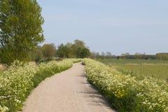 与自行车道路和草原的风景 图库摄影