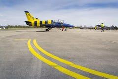 与航空L-39 Albatros的波儿地克的蜂喷气机队飞行在跑道的身分 库存照片