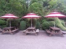 与色的伞的室外木长凳 库存照片