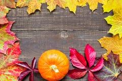 与色的叶子和南瓜的秋天背景在土气木背景 免版税库存图片
