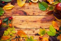 与色的叶子的秋天背景在木土气委员会机智 免版税库存图片