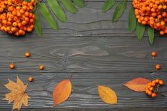 与色的叶子的秋天背景在黑暗的木板 顶视图 库存图片