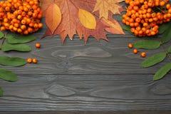 与色的叶子的秋天背景在黑暗的木板 顶视图 库存照片