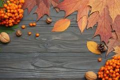 与色的叶子的秋天背景在黑暗的木板 顶视图 免版税库存图片