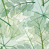 与色的最基本的叶子的传染媒介无缝的背景 皇族释放例证