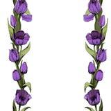 与色的桃红色郁金香的无缝的背景 r 与五颜六色的郁金香的花卉无缝的背景 r ?treadled 向量例证