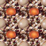 与色的海石头的海洋岸 与不同的形状的壳无缝的样式的海小卵石 免版税图库摄影