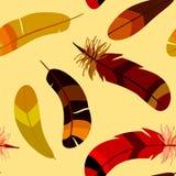 与色的风格化羽毛的无缝的样式 免版税库存图片