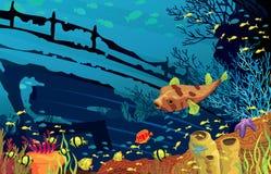 与色的鱼的珊瑚礁 免版税图库摄影