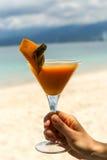 与芒果coctail的马蒂尼鸡尾酒玻璃与海在背景中 免版税库存照片