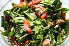 与芝麻菜和蕃茄的新鲜的沙拉 库存图片