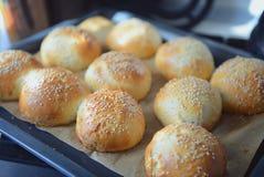 与芝麻籽的小圆面包 免版税图库摄影